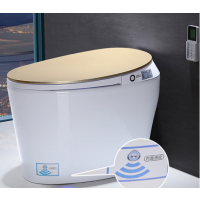 intelligent one piece toilet